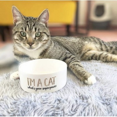 Comedero Cat