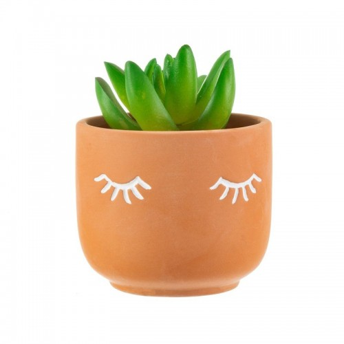 Mini Eyes Planter
